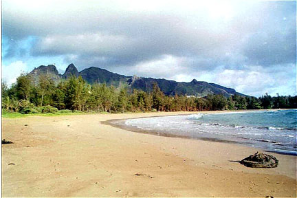 See the Anahola mountains from the south end of the beach or from the outer edge of the reef in front of the property